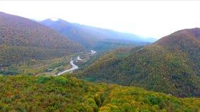 Flyga över Kaukasus den kulöra bergskogen stock video