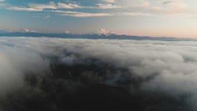 Flyga över molnen på skymning eller på gryning Flyga ovanför molnen i riktningen av ett högt snöig berg _ arkivfilmer