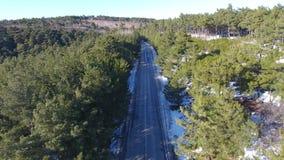 Flyga över vägen i skogen, flyg- sikt lager videofilmer