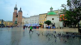 Flyga duvor i huvudsaklig marknadsfyrkant, Krakow, Polen arkivfilmer