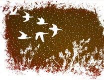 flyga för fåglar stock illustrationer