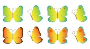 Flyga för fjärilar Arkivbilder