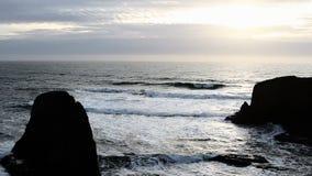 Flyga för Seagulls för havvågor och för sen eftermiddag för kust lager videofilmer