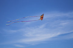 Flyga fritt som en monark arkivbilder