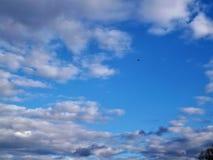 flyga high Fotografering för Bildbyråer