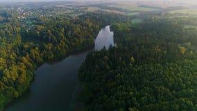 Flyga ovanför den dimmiga sjön tidigt på morgonen arkivfilmer