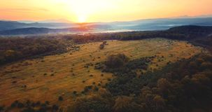 Flyga ovanför den gröna skogen, kullar som täckas med dimma, röd sol som ner går Ryssland lager videofilmer