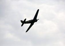 Flyga skärm och aerobatic show i Malopolski Piknik Lotniczy Arkivbilder