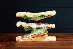 Flyga smörgåsen royaltyfri foto