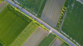 Flyga vertikalt ovanför bilkörning på vägen 4K Antennskott från överkant av bilmedelkörning på bygd med gräsplan stock video