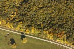 Flygbild av en skog och en väg Arkivbilder