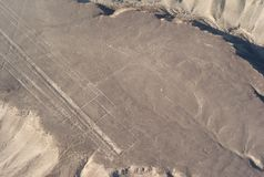 Flygbild av kolibrin, Nazca linjer, Peru royaltyfri bild