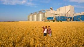 Flygbild av två bönder som står i ett vetefält och ser diskutera långt skörden och businness män två Royaltyfri Fotografi