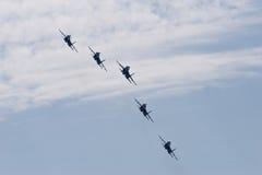 flygbildande Fotografering för Bildbyråer