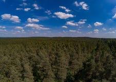 Flygbilden av skoglandskapet kallade Tennenloher Forst nära byn Tennenlohe arkivbild