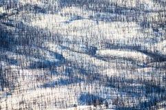 Flygbilden av Yellowstone parkerar royaltyfria bilder