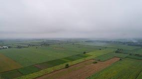 Flygbildgräsplanfält i morgonmisten Arkivfoton
