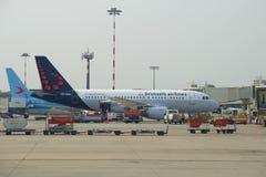 Flygbuss A319-111 OO-SSA Brussels Airlines på den Malpensa flygplatsen Arkivbild