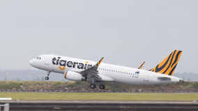 Flygbuss A320-232 Tiger Airways, Australien Arkivfoto