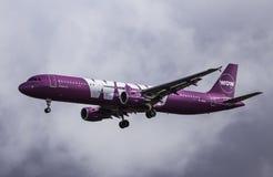Flygbussen A321-211 - ÖVERRASKA luft Fotografering för Bildbyråer
