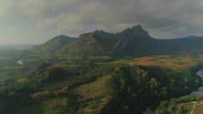 Flyget för surret för solnedgången för djungler för nationalparken för LAN för den tropiska thailändska cheoen gömma i handflatan arkivfilmer