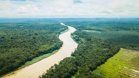 Flygfotografering av den Kinabatangan floden i Borneo arkivfoton