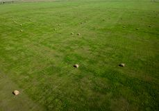 Flygfotografering av fältet för höbal i South Dakota jordbruk royaltyfri bild
