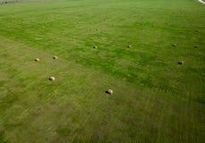 Flygfotografering av fältet för höbal i South Dakota jordbruk arkivfoto