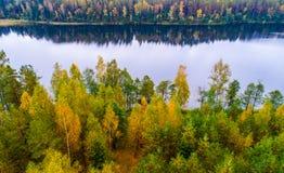 Flygfotografering, sjöar och skog royaltyfria bilder