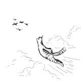 Flygkatt Arkivbild