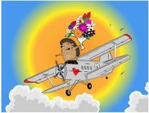 flygplanigelkott Arkivbilder