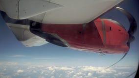 Flygplanvinge och en sikt för blå himmel från en nivå lager videofilmer