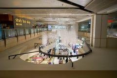 flygplats changi singapore Arkivfoto