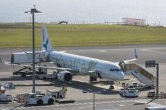 Flygplatspersonal på den João Paulo II flygplatsen i Ponta Delgada Sao Mig royaltyfria bilder