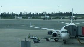 Flygplatspersonal som sätter bagage på transportbandet av flygplanet Bagage laddas på en passagerarenivå av flygplatsarbetaren stock video