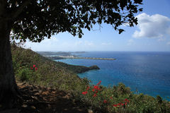Flygplatssikt på St Thomas USA Jungfruöarna Royaltyfria Bilder