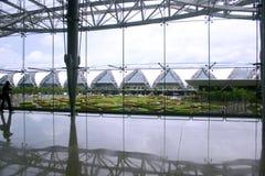 flygplatssuwannaphum Royaltyfri Foto