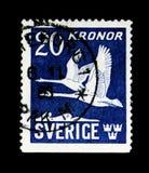 Flygsvanar, serie, circa 1953 Fotografering för Bildbyråer
