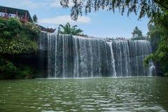 Flygvattenfall i bambuskog av bambuhavsområde in Royaltyfri Bild