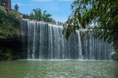 Flygvattenfall i bambuskog av bambuhavsområde in Arkivfoto