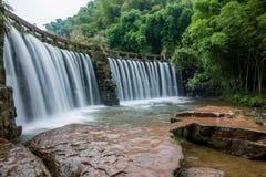 Flygvattenfall i bambuskog av bambuhavsområde in Royaltyfria Foton