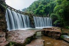 Flygvattenfall i bambuskog av bambuhavsområde in Royaltyfria Bilder