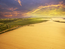 Flying above agricultural fields. Late afternoon sunset above agricultural wheat fields Stock Photos