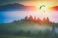 Flying above foggy valley. Instagram stylisation. Paraglide silhouette flying above misty carpathian hills against majestic sunrise in a mountain valley Royalty Free Stock Image