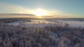 Flying above forest and farm in winter at sunset stock footage