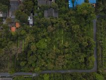 Flying above Forest with houses, top view of lush trees.  Stock Images