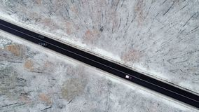 Flying above highway. In winter forest, little car driving on black road in white winter forest stock video
