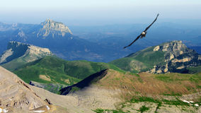 Flying above the mountains Stock Photo