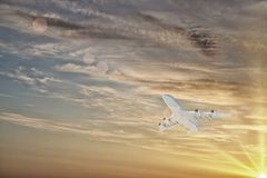 Flying airplane Stock Photo