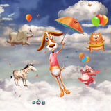 Flying Animals Stock Images